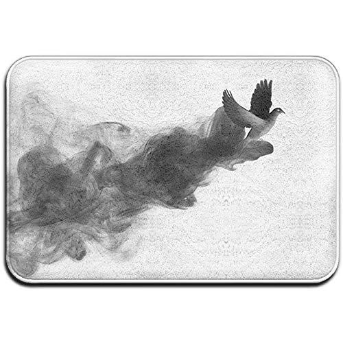 rutschfeste Fleckenverblassungsbeständige Fußmatte Black Smoke Dove Outdoor-Fußmatte Raumteppich 40 * 60 cm