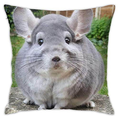 Perfectly Round Chinchilla Camerons Soft Square Throw Pillow Covers Cushion Case 45X45CM