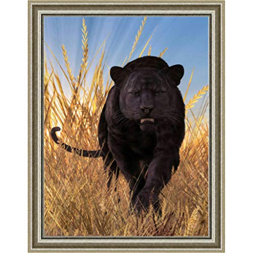 sunnymi  5D Diamond Painting, Lion Full Drill Diamond Painting DIY Rhinestone Glued Diamond Crystal Embroidery Pictures Home Decor (Lion B, 30 x 40 cm)