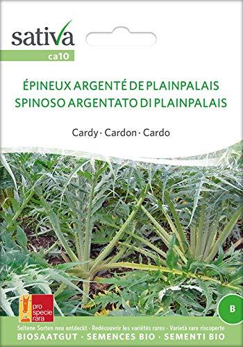 Sativa Rheinau ca10 Cardy Epineux Argente De P.-Palais (Bio-Cardysamen)