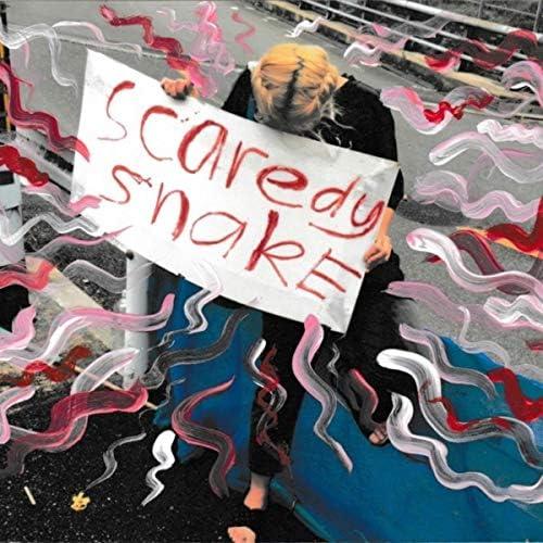 Scaredy Snake