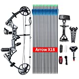 "Compound Bow Ship from USA Warehouse,Topoint Archery Package,M1,19""-30"" Draw Length,19-70Lbs Draw Weight,320fps IBO Limbs Made in USA (Black camo)"