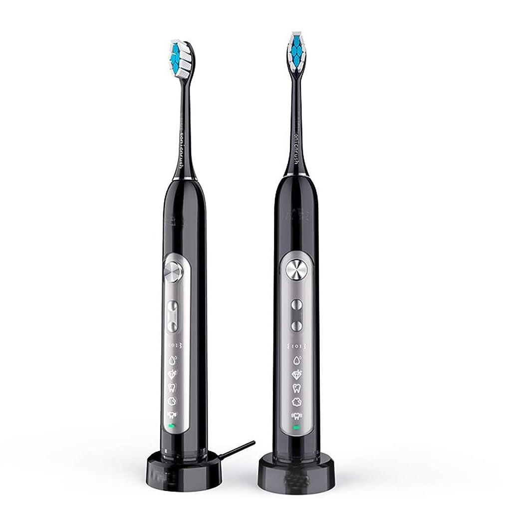 連邦コミュニケーション冗長電動歯ブラシ USBの充満基盤が付いている歯ブラシを白くする大人の防水電気柔らかい毛 (色 : ブラック, サイズ : Free size)