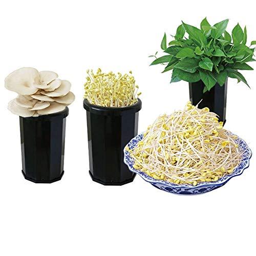 WSXMLA 2 Pcs semences germoir, graines Sprout Maker Maison hydroponique Panier Soilless Graine Sprouter Germination Kit Plateau avec Couvercle for Garden Home