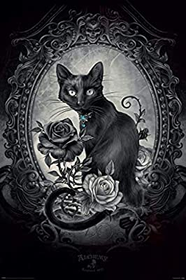 Alchemy Paracelcus Gothic Cat Wall Art Poster
