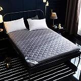 JIAOXM Colchón Plegable Grueso, colchón Impermeable de Tatami japonés, colchón futón con diseño Acolchado ergonómico,C,120×200cm