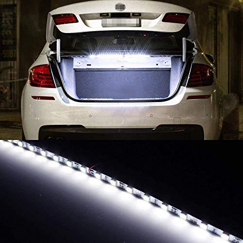 Trunk Lights