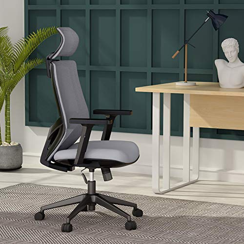 Ergonomic Office Desk Chair, Mesh Chair with Lumbar Support, Tribesigns High Back Computer Chair with Breathable Mesh, Thick Seat Cushion, Adjustable Armrest and Backrest
