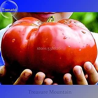 Amazon.es: semillas tomate