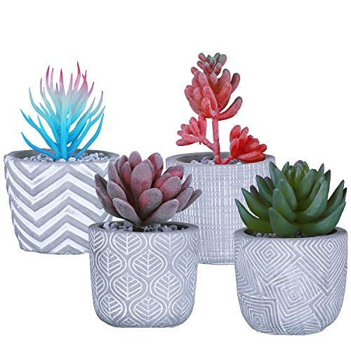 Antner Cement Succulent Planter Pots Small Concrete Cactus Plant Pot Indoor Herb Window Box Container with Drainage Hole for Home Office Decor, 4 Pack, Grey