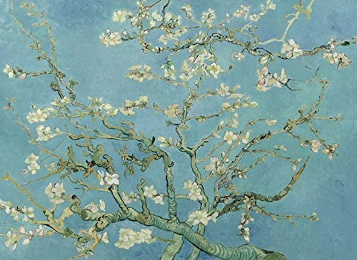 PalaceLearning Vincent Van Gogh Almond Blossom Poster Print 1890 Fine Art Wall Decor 18 x 24 product image
