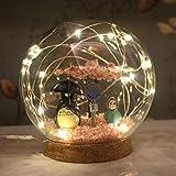 HBHHB Nachtlicht Für Kinder Cartoon Anime Lampe, Kawaii Kids Gift, Kreative Miniatur Wohnkultur(2...