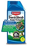 BioAdvanced 701810A Systemic Plant Fertilizer and Insecticide with Imidacloprid 12 Month Tree &...