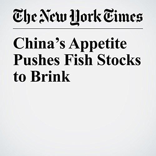 China's Appetite Pushes Fish Stocks to Brink copertina