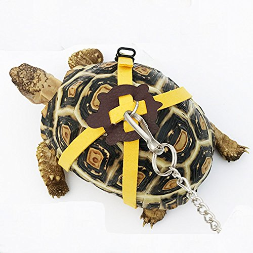 ebamaz Leather Harness Strap for Tortoise/Turtle Pet Walking Lead Control Rope Chest Collar (L)