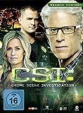 CSI: Crime Scene Investigation - Season 13.2 [3 DVDs] - Jorja Fox
