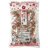赤城フーズ 熱中カリカリ梅 業務用サイズ 500g(約40粒) 国産梅使用