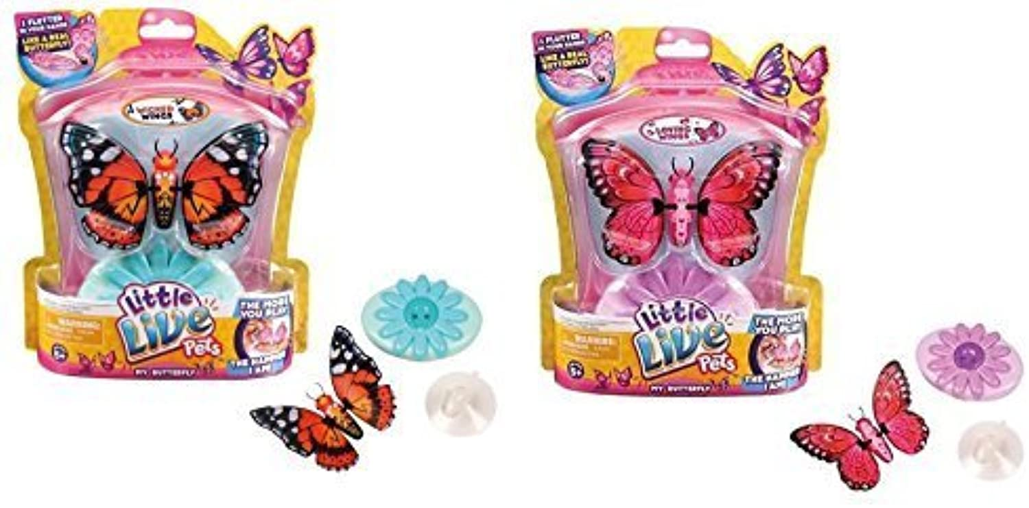 Little Live Pets Bird  6 Sweet Sophie Single Pack Playset by Little Live Pets