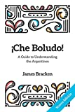 ¡Che Boludo!: The Gringo's Guide to Understanding the Argentines