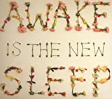 Songtexte von Ben Lee - Awake Is the New Sleep