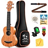 Donner Soprano Ukulele Beginner Kit Mahogany Professional 21 inch Ukelele Online Lesson Gig Bag Strap Nylon String Tuner Picks Cloth DUS-1 Ukalalee Set