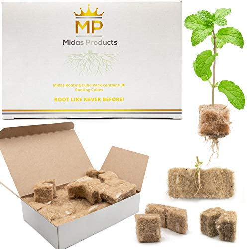 Rooting Hormone Cubes for Cloning Kit - Biodegradable Root Booster for Fast Root Growth - Advanced Cloning Hormone Rockwool Alternative - 30 1x1 inch Root Starter Seed Starter Plugs for Cloning Trays