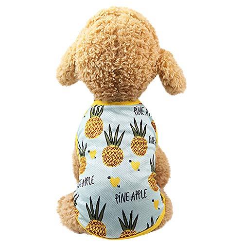 Shirts für Hunde Haustier Welpen Kleidung Hundeshirts Hundepullover Druck T-Shirt Pullover Kurzarm Hundeshirt Sommer Hundekostüm Atmungsaktive Baumwolle Hemd