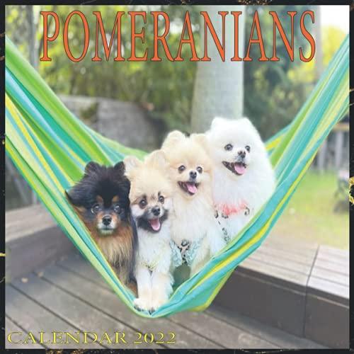 Pomeranians Calendar 2022 - Monthly Calendar 2022: Dog Breeds Calendar 2022 - Dog Lovers