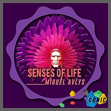 Senses of Life