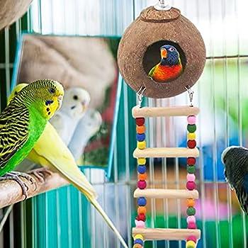 pologyase Balançoire pour perroquet en coquille de noix de coco avec 100 nids en fibre de bois non toxique pour perruches, pinsons, canaris, oiseaux, colibris
