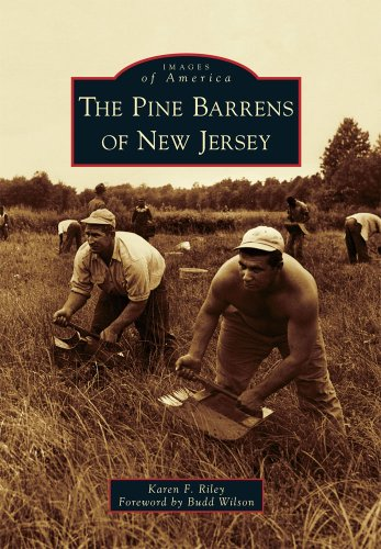 The Pine Barrens of New Jersey (Images of America)