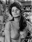 Celebrity Photos Sophia Loren Photo Print (60,96 x 76,20