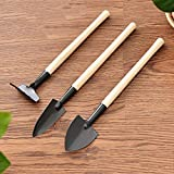 YKSO 3 unids/set mini herramientas de jardinería mango de madera acero...