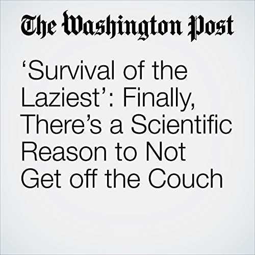 'Survival of the Laziest': Finally, There's a Scientific Reason to Not Get off the Couch copertina