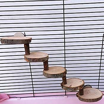Échelle de hamster en bois, échelle pour animaux de compagnie en bois naturel échelle d'escalade de hamster jouet de pont pour animaux de compagnie, outil d'escalade pour animaux de compagnie acc