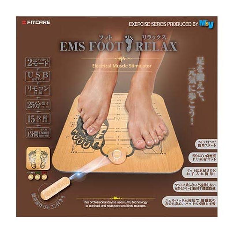 歯痛好奇心盛辞任EMS フット リラックス×2個セット