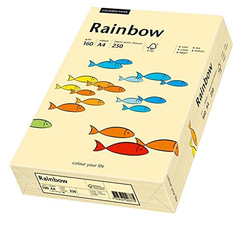 Papiro Multifunktionspapier Rainbow, DIN A4, 160 g/qm, gamuza, 250 Blatt