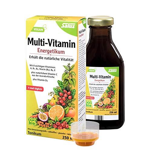 Salus Multi vitamina Energético, pack de 1. 1 x 250 ml