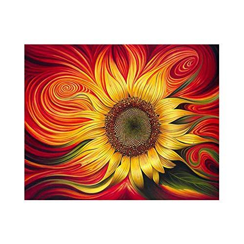 xdai DIY Malen nach Zahlen für Erwachsene Ölgemälde Kit für Kinder Anfänger,Rote Sonnenblume Leinwand Weihnachten Geschenk Heimdekoration Ohne Rahmen-50x60cm