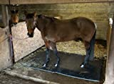 Easimat Horse Stable Mat 6ft x 4ft x 22mm thick