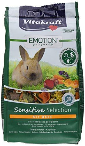 Vitakraft Alleinfutter für Zwergkaninchen, Ausgewogene Futtermischung, Getreidefrei, Emotion Sensitive Selection (5 x 600g)