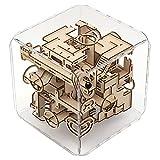 Intrism Pro 3D Wooden Puzzle Kit