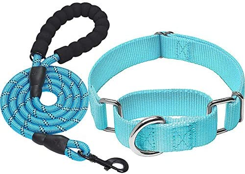 haapaw 2 Packs Martingale Dog Collar Dog Collars for Small Medium Large Dogs product image