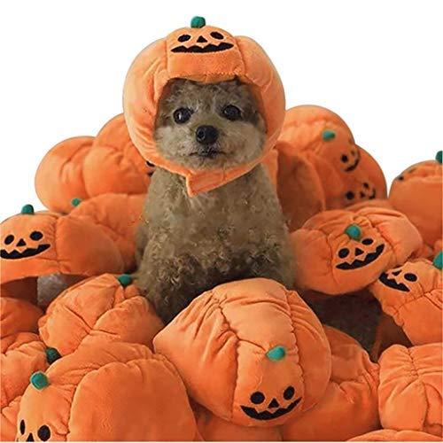 Gorro de calabaza para Halloween, diseo de perro, para fiestas de disfraces o cachorros, suministros para fiestas de Halloween