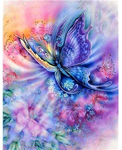 N/C Pintura De Mariposas De Colores del Arco Iris por Kits De Números Pintura Digital De Bricolaje para Colorear sobre Lienzo Pintura Al Óleo por Ti Mismo Hecho A Mano 40X50Cm Sin Marco