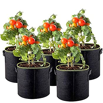 MEIHAILAN 5Pack 1 Gallon Grow Bags Heavy Duty Non-Woven Fabric Plant Pots Vegetable Flower Planting Bags Tomato Strawberry Potato Planter Bags Garden Container Pot with Handles
