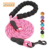 BAAPET 5 FT Strong Dog Leash with Comfortable Padded Handle and Highly Reflective Threads Dog Leashes for Small and Medium Dogs (Pink)