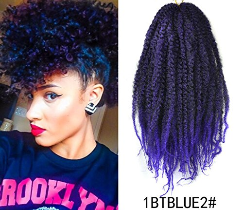 Marley Afro Braid Ombre Hair Extensions, Kinky Curly Bulk Twist Crochet Braids 32 Strands/Pack,...