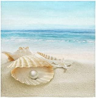 INTERESTPRINT Starfish Sea Shell Pearl Summer Beach Seaside Ocean Wave Nautical Washcloth Dish Cloth Bath Towels for Bathroom Kitchen and Travel Use,13X13 Square
