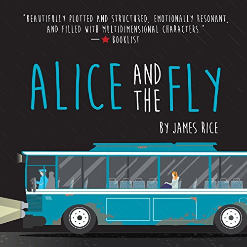Alice and the Fly  By  cover art